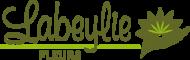 Logo Fleuriste à Thiviers - Labeylie Fleurs 24800